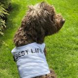 1_BestLife-share-190